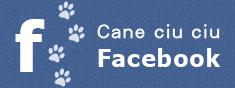 カーネチュチュのフェイスブックページ